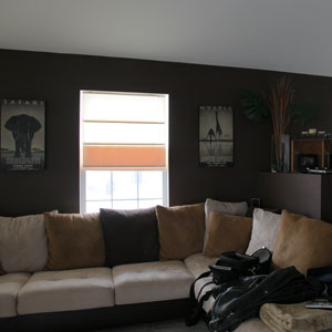Painting Services, Ingleside IL